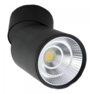 Wall Light TS-G0210 black 20(W)