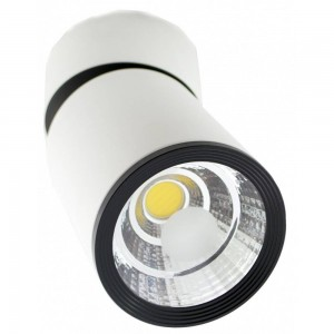 Wall Light TS-G0210 white 20(W)