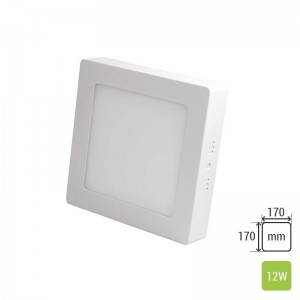 Square Ceiling Panel Mounted TS-P0312 (12W)
