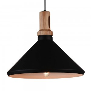 Iron Pendant Lamp F4540/1 BK+GD BLACK