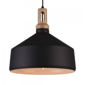 Iron Pendant Lamp F4541/1 BK+GD BLACK