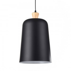 Iron Pendant Lamp F4639/1black