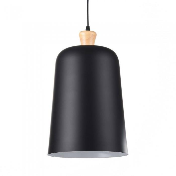 Iron Pendant Lamp F4639/1black