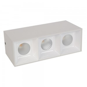 Grid Light housing LM 3008-3*10WL White