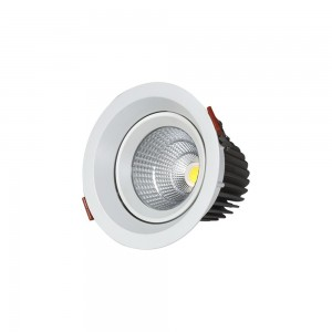 Cob downlight LM S1005A-12W