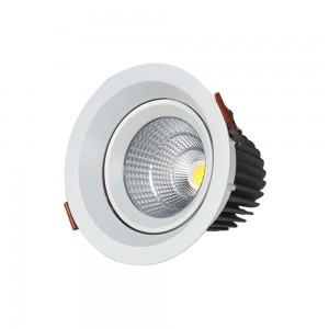 Cob downlight LM S1005A-20W