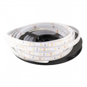 Color LED Strip SMD2835 60led/m IP67 roll 5 (m)