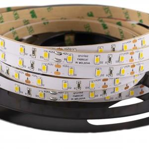 Color LED Strip SMD2835 60led/m IP20 roll 5 (m)