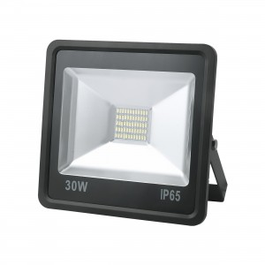 Projector LED 30 (W) color