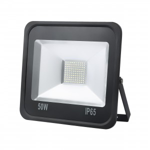 Projector LED 50 (W) Color